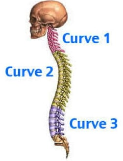 The Top 5 Tips for Better Posture